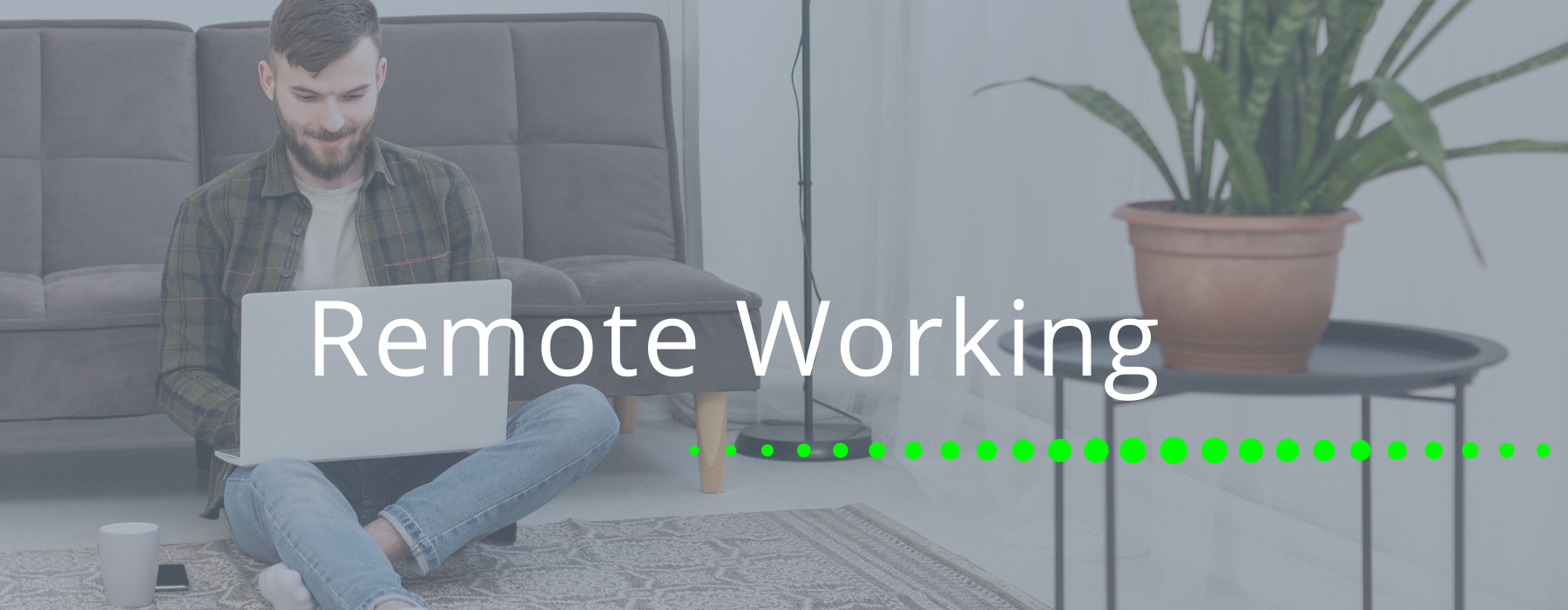 Remote / Flexible Working